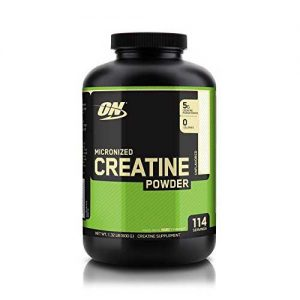 Micronized Creatine Powder Optimum Nutrition